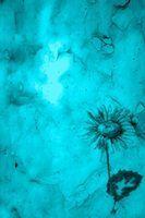 Les couleurs qui vont avec un tapis vert sarcelle