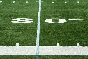 Collèges floride avec des programmes de football