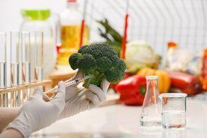 Responsabilités technologue alimentaire et les activités quotidiennes
