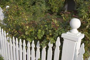 Types de maison clôtures