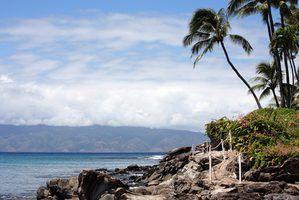 Hawaii réglementation de la pêche sous-marine