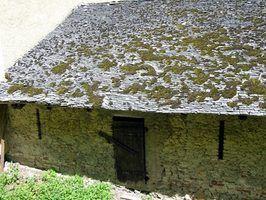 Moss peut endommager un toit de bardeaux de cèdre.