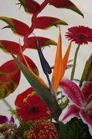 Modernes idées d`arrangement de fleurs
