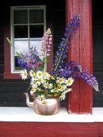 Idées de couleur porche