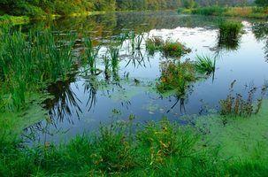 Règlement pour les étangs de construction dans pennsylvania