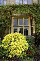 Les meilleures nuances pour les grandes fenêtres