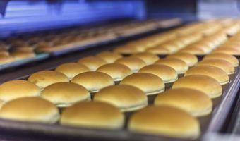 Types de pains à hamburger