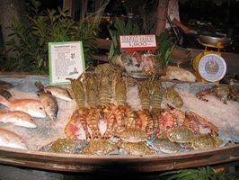 Restaurants waterfront à sebastian, floride