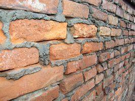 Quelles sont les causes de la moisissure blanche sur des briques?
